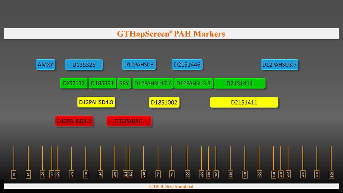 Marker arrangement in GTHapScreen PAH 5-dye QF-PCR kit for Phenylketonuria or PKU prenatal screening
