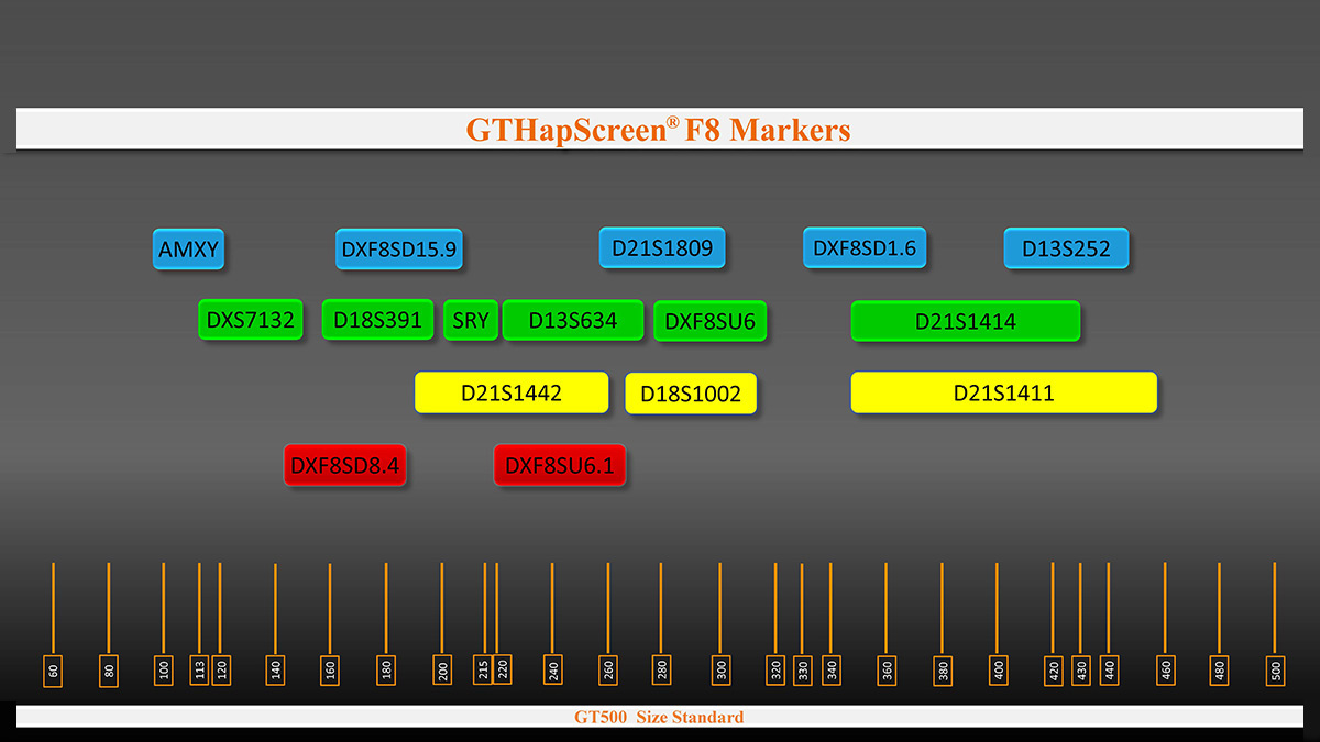 STR Marker arrangement in GTHapScreen F8 5-dye QF-PCR kit for Factor VIII deficiency or Hemophilia A disorder diagnosis